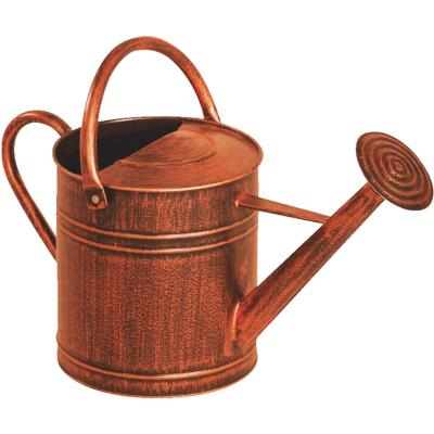 Panacea 2 Gal. Brushed Bronze Metal Watering Can